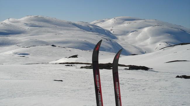 Åsnes Rago fjellski var mellom dei siste skia som vart laga på Straumsnes. Foto: Kjell Arvid Stølen, NRK.