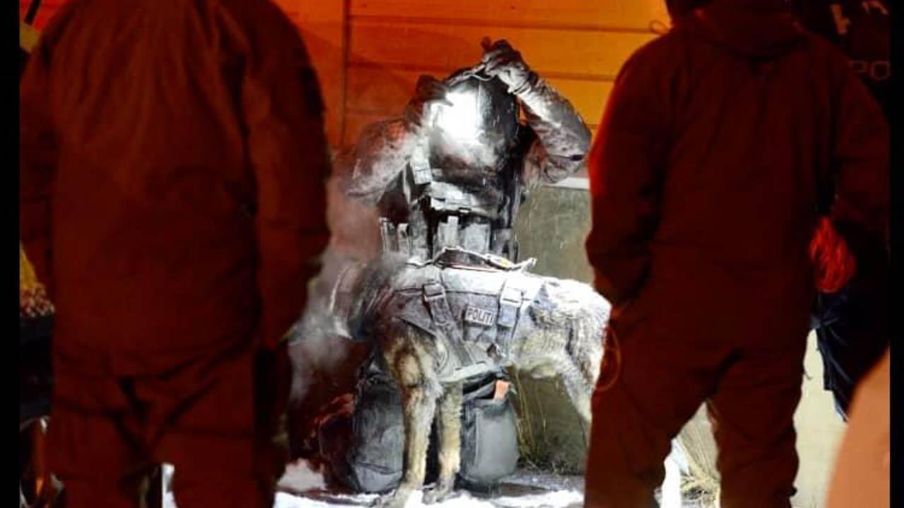 Patruljehunder fra Oslo politidistrikt har deltatt i søk i det krevende skredområdet.