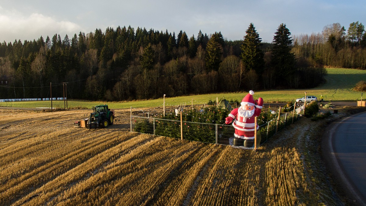 Ingen hvit jul i Nittedal i 2015.