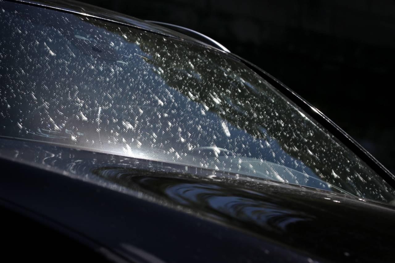 En frontrute på en bil har masse flekker på seg fra insekter som har truffet bilruta i fart. Det er nesten ikke mulig å se gjennom ruta.