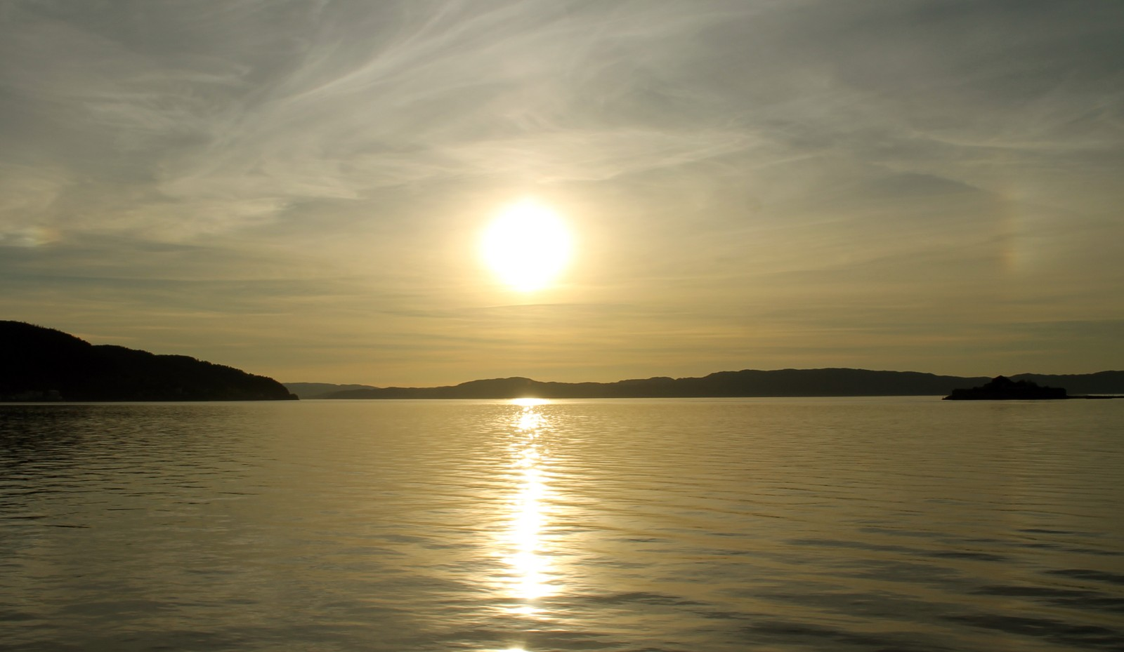 Maikveld ved Trondheimsfjorden