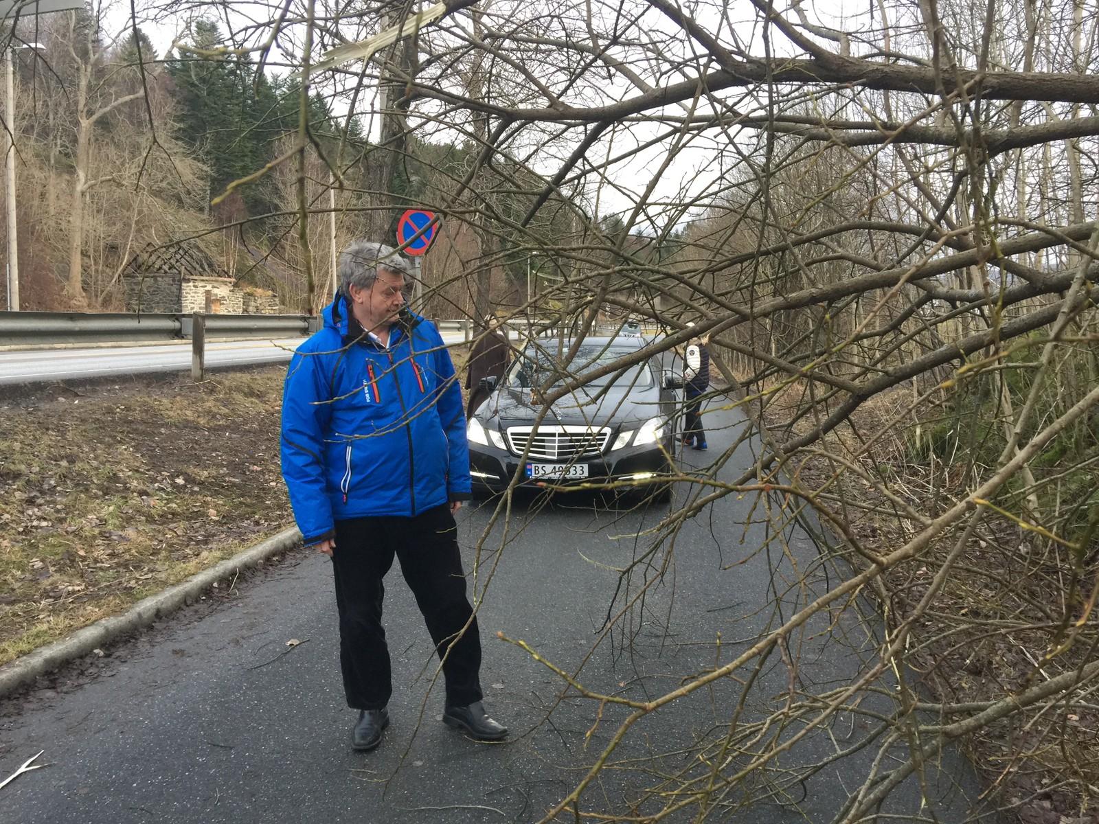 Fredrik Odfjell skal besøke familien, men først må dette treet på Bønesstranda i Bergen bort. For ham og mange andre blir dette en ryddesøndag.