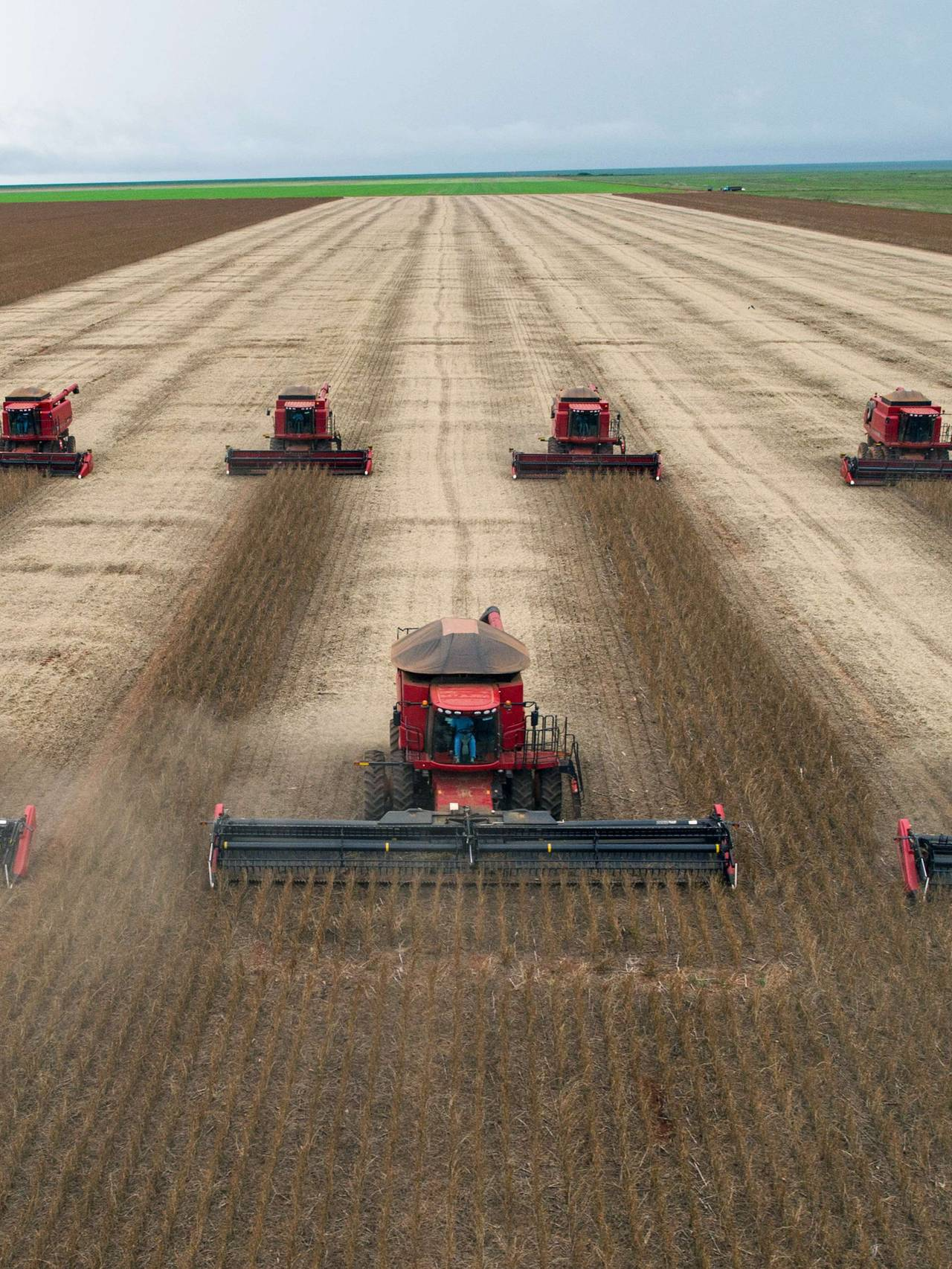 BRAZIL-ECONOMY-AGRICULTURE-GRAIN-SOY-FILE
