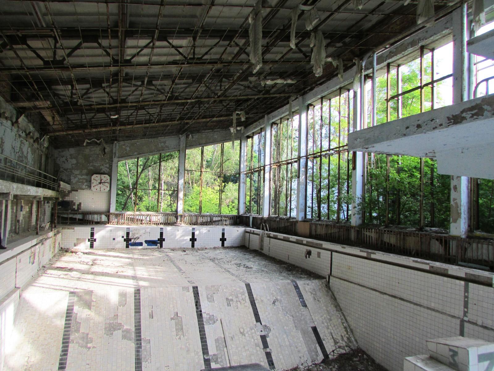 Om sommeren vokser skogen inn gjennom de knuste panoramavinduene i svømmehallen.