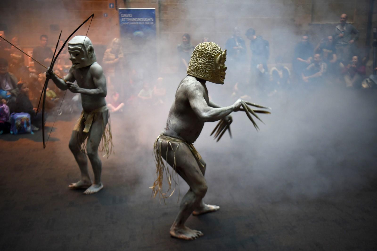 Dette er gjørme-menn fra Asaro i Papua Ny-Guinea. Her viser de fram et ritual ved the Australian Museum i Sydney. Ritualet har tradisjonelt blitt brukt til å skremme fiender.