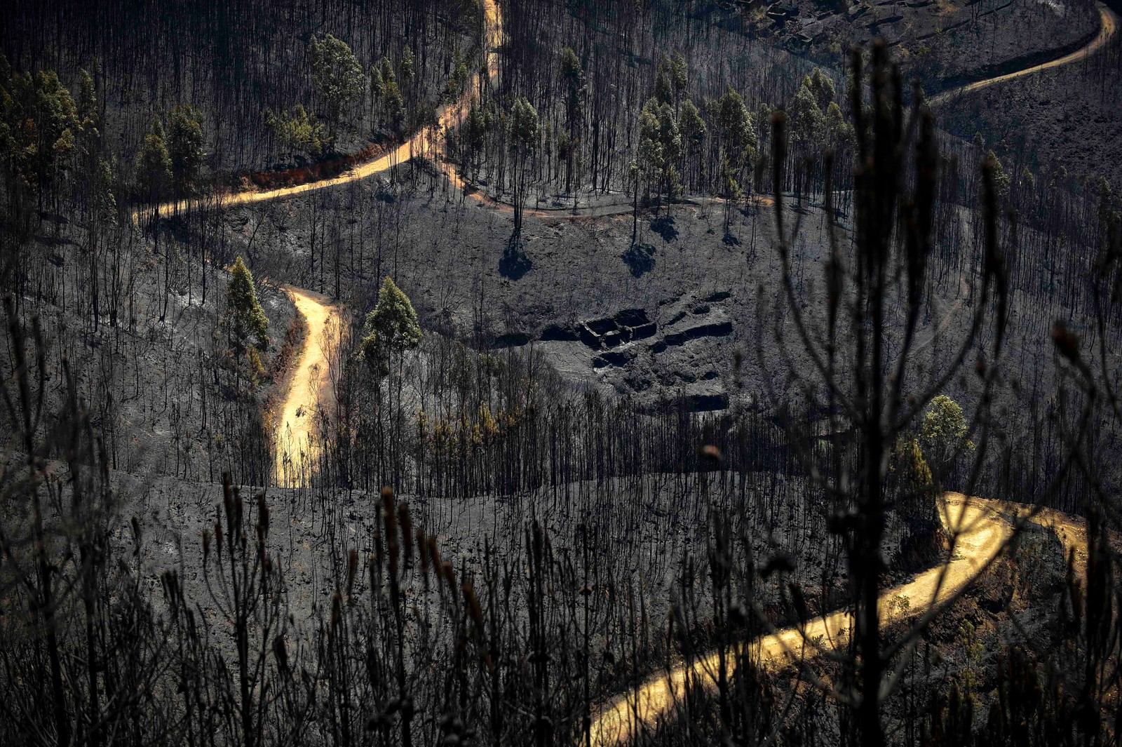 Et landskap etter skogbrannen i Vale do Cambra i Portugal.