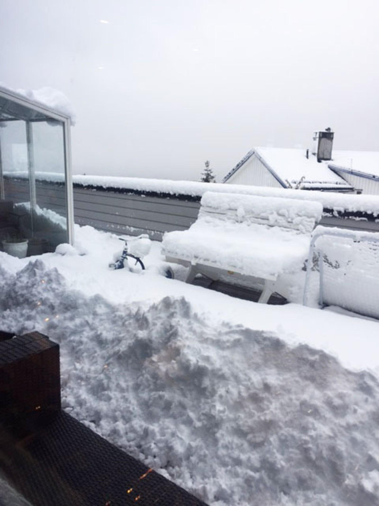 """""""Tilstandsrapport fra Midtstuen,"""" skriver innsender. """"Vi fikk snø i går som ikke smeltet, og i dag er det enda mer!"""""""