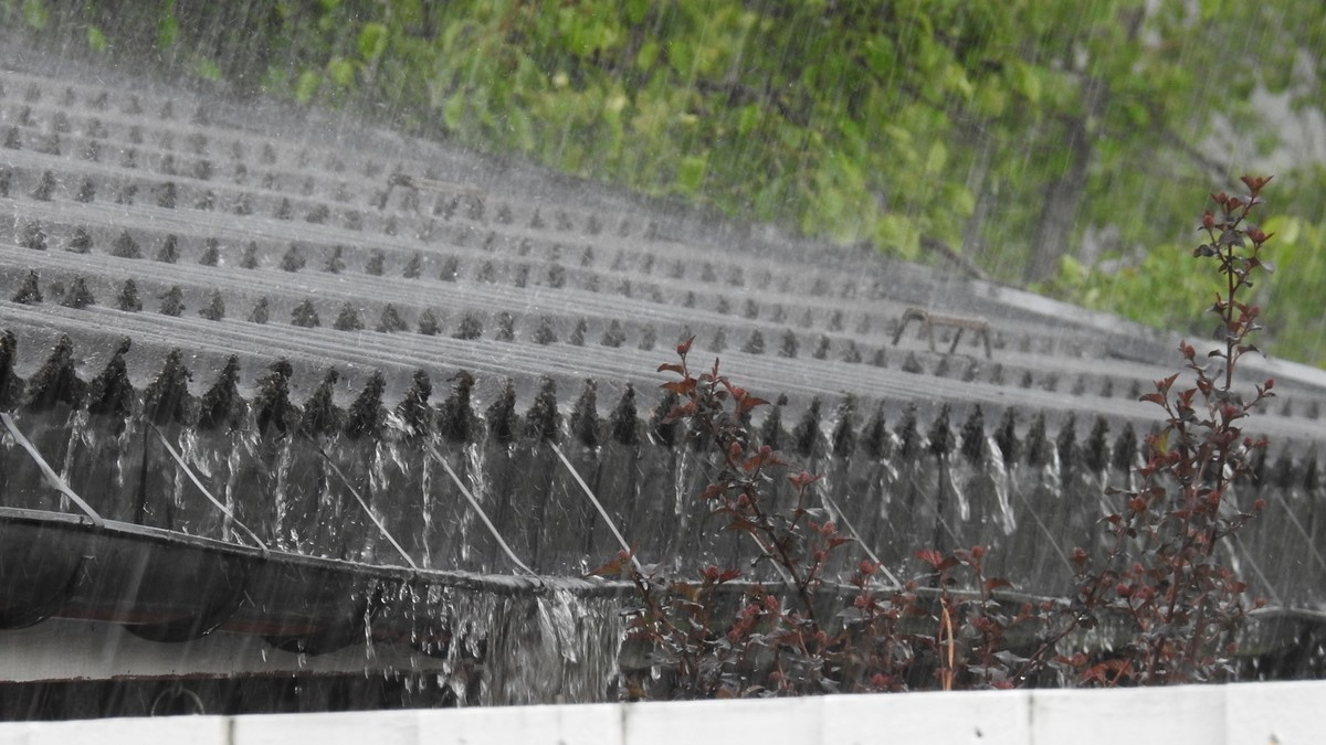 Regn i takrenna