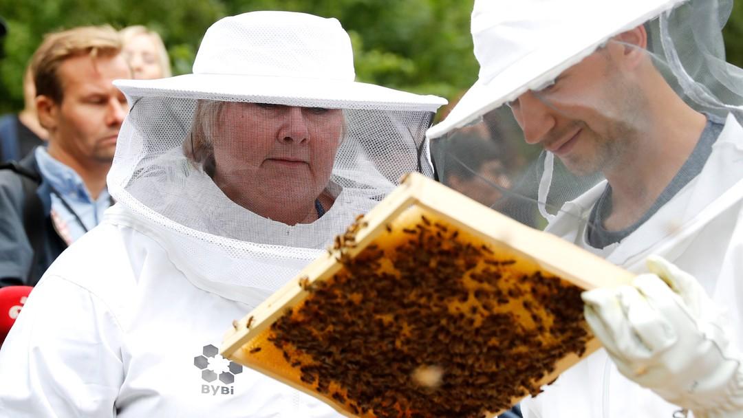 Statsminister Erna Solberg deltar på åpningen av en biepark i Stensparken i Oslo.