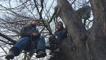 Sondre Båtstrand fra Miljøpartiet De Grønne er en av aksjonistene som prøver å hindre fellingen av 24 trær i Jekteviken onsdag morgen.