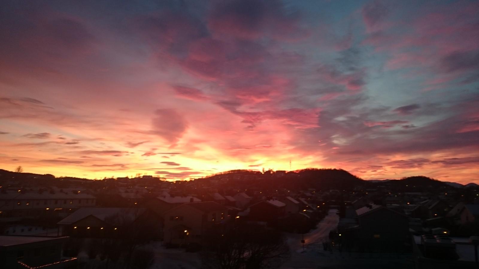 Morgenstund har gull i munn. Fra Bodø.