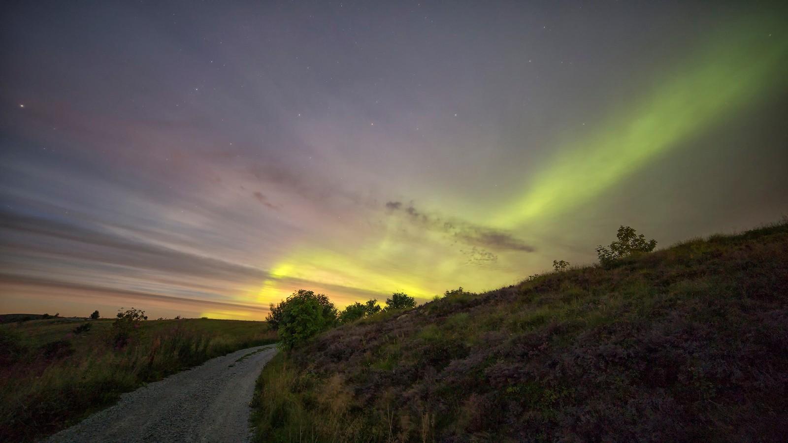 Aurora lyser opp over røsslyngen på Frøya