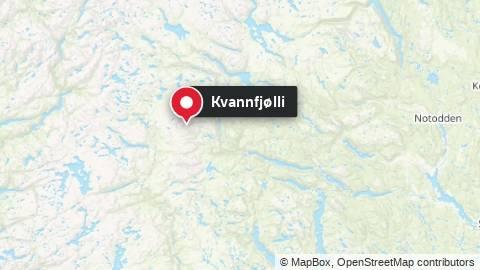 Kvannfjølli i Tokke kommune