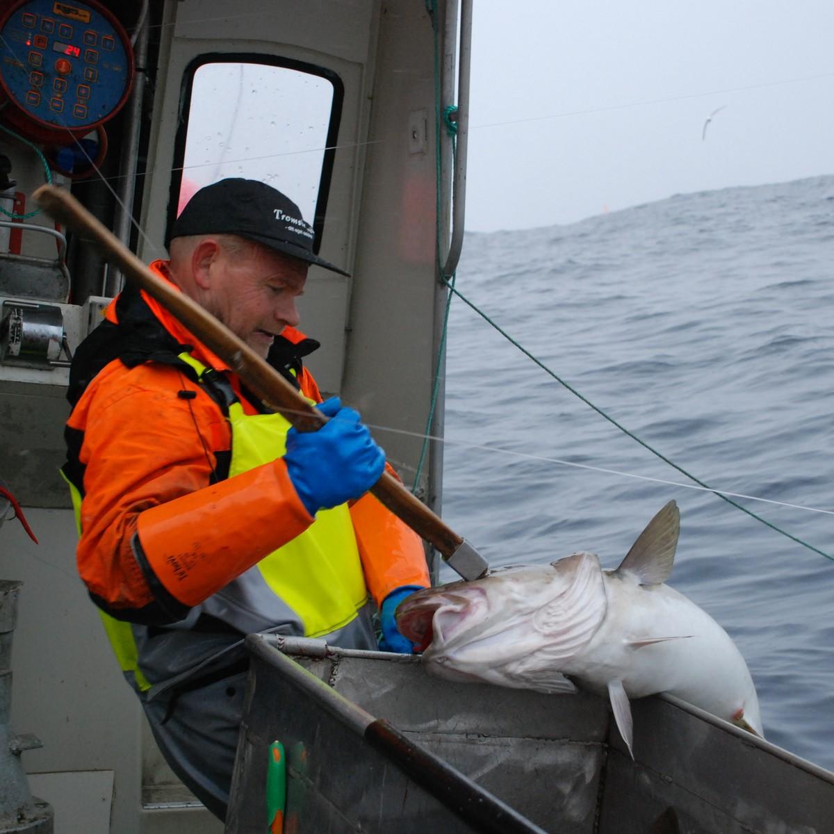 jukse fiskeredskap