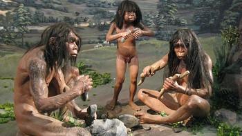Homo erectus-familie