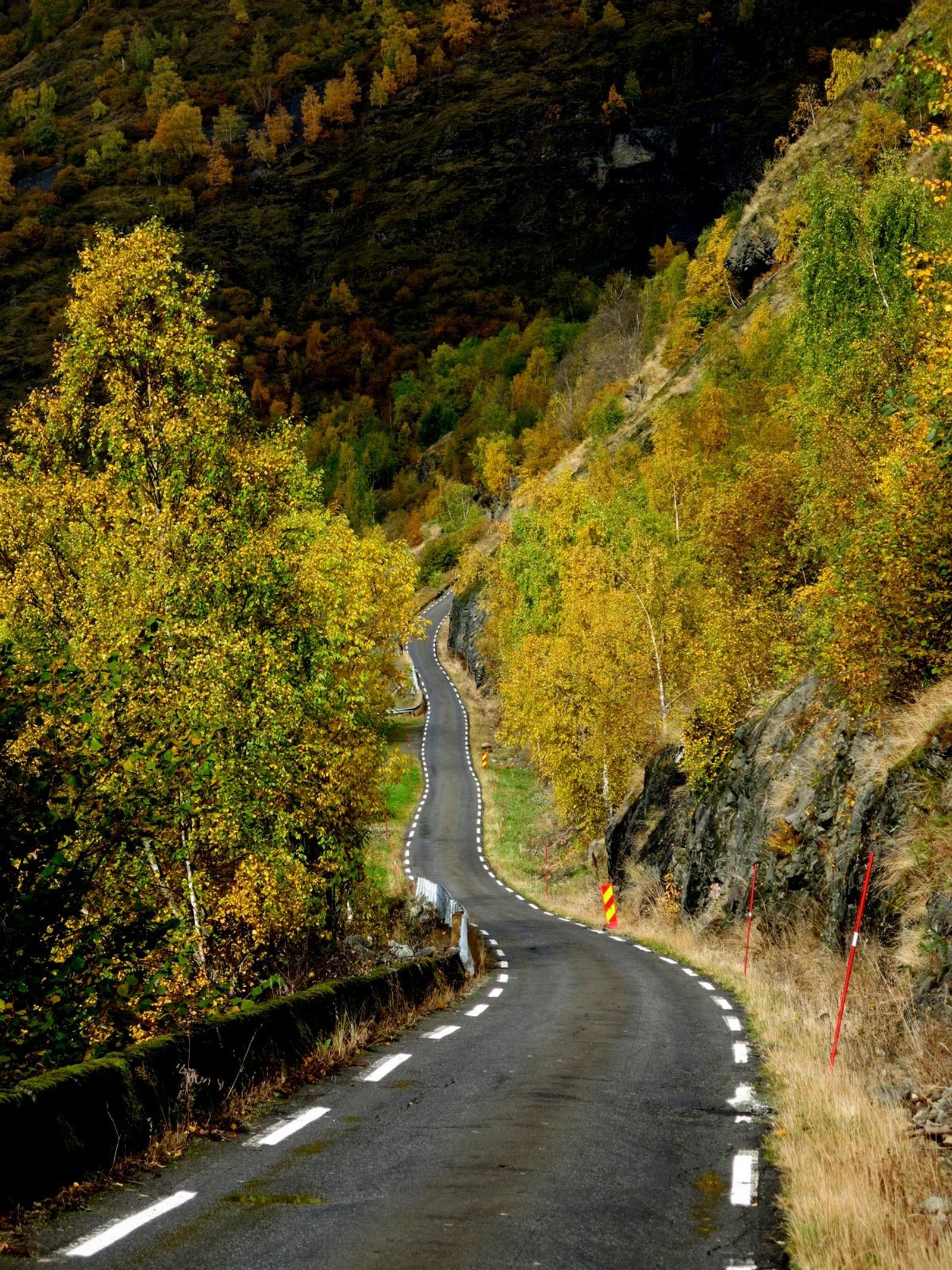 Vegen til Skjærdal.
