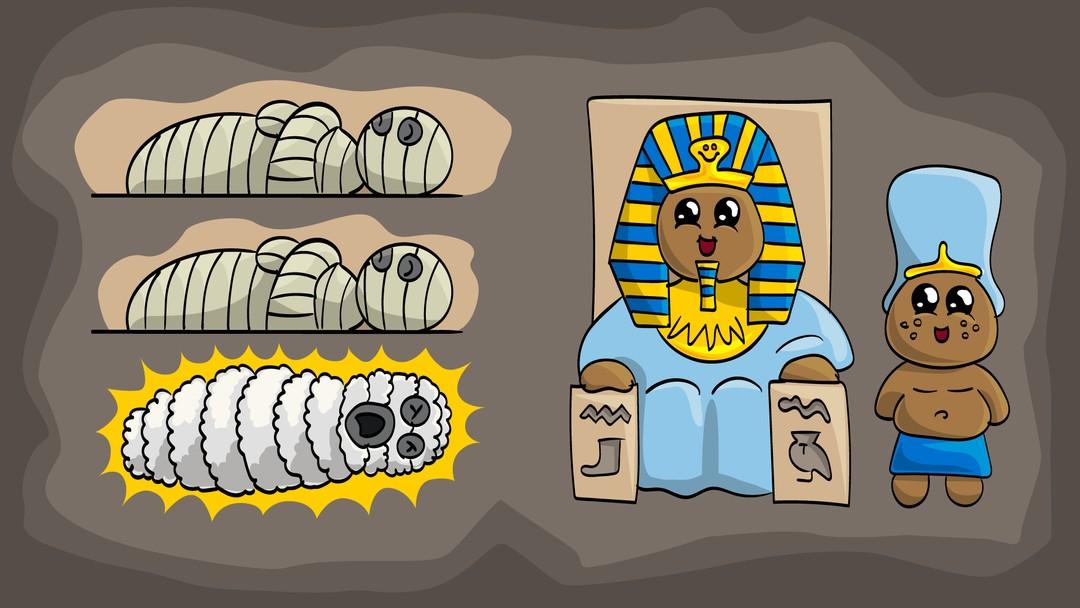 Mysterie om mumie i saueskinn