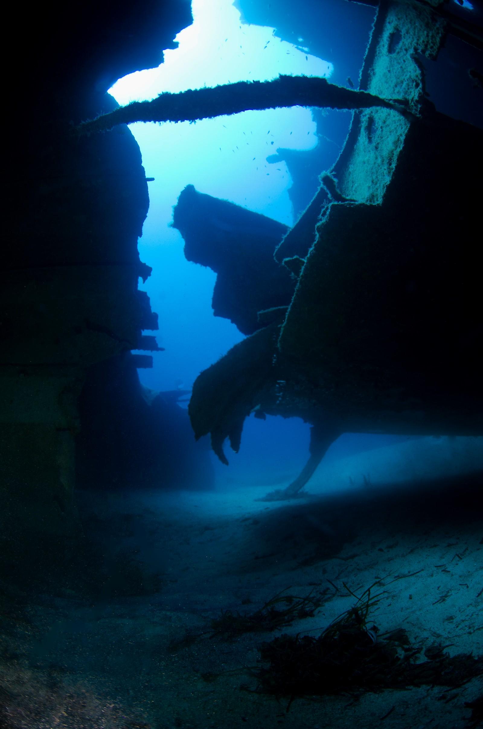 «Fugl i vrak» Ser du hanen? Fra vraket «Um El Faroud» på Malta. En lastebåt som eksploderte i Valetta i 1978. Vraket ble slept utenfor kysten og senket som dykkermål. En storm knakk båten i to noen år senere.