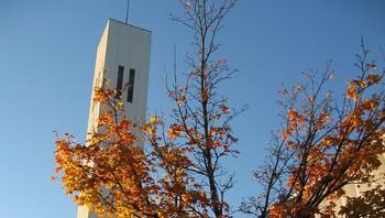 Høst ved Steinkjer kirke