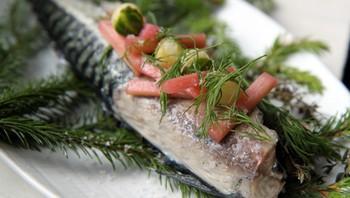 Grillrøykt makrell med syltet rabarbra