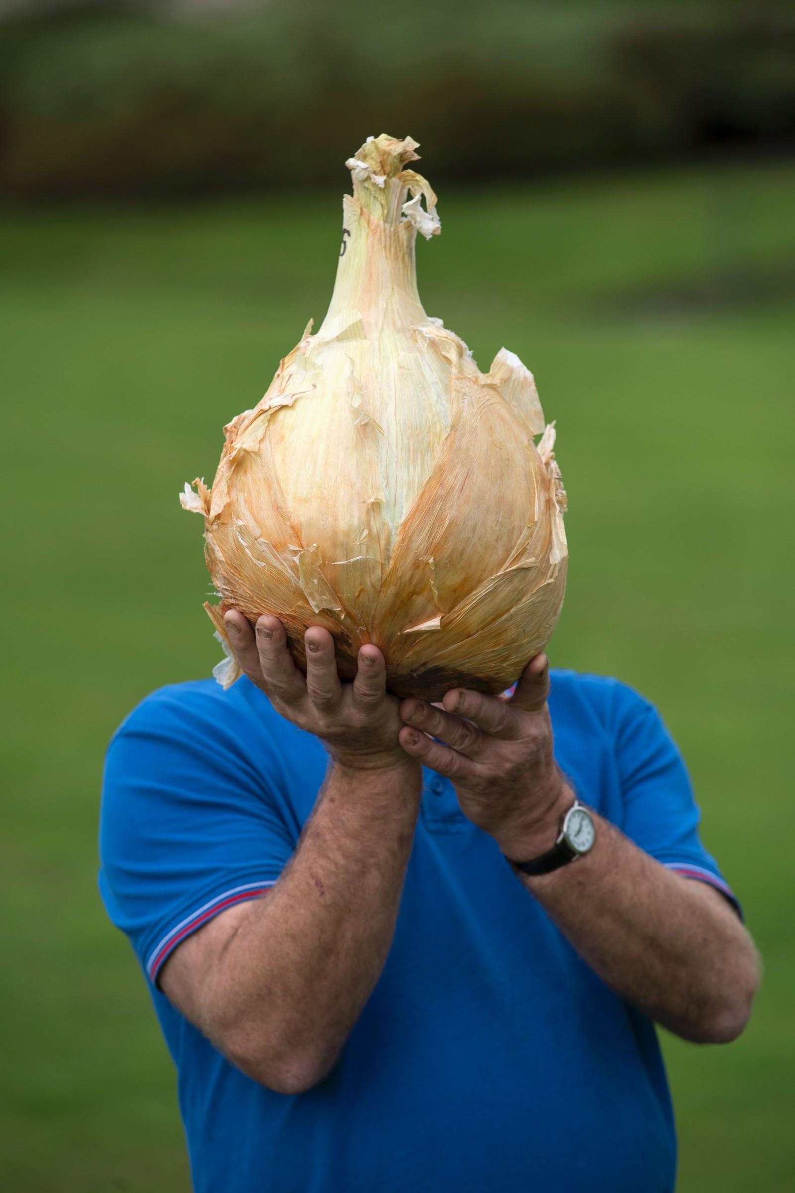 Joe Atherton med løken som vant konkurransen for verdens tyngste løk under Harrogate Autumn Flower Show i Harrogate i England 16.-18. september. Løken veier 7,01 kilo.