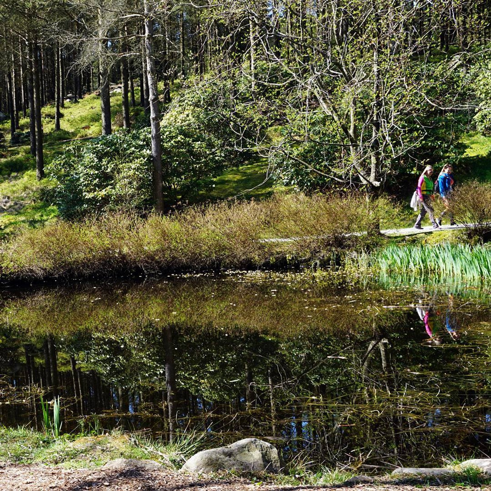 Fra Rogaland arboret i Sandnes.