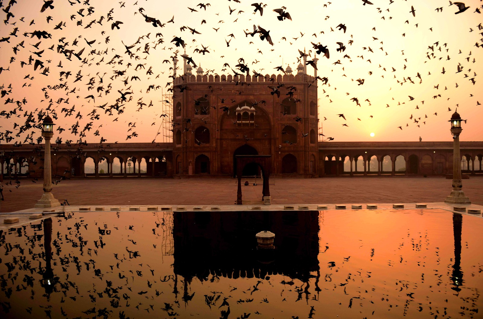 Fugler flyr over Jama Masjid i New Delhi i India.
