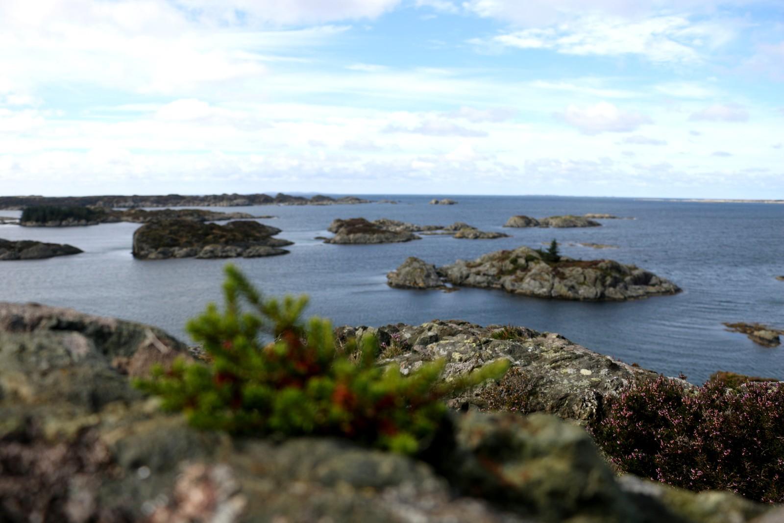 Fra Visnes på Karmøy