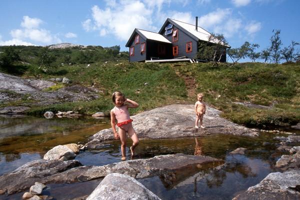 Grautheller -  Foto: Kjell Helle-Olsen