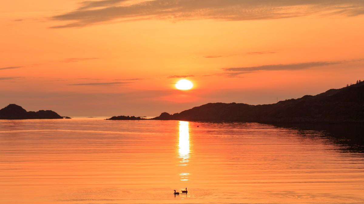 De siste dagene har det vært ekstra varmt i Nordland, og flere steder har vist seg fra sin beste side, slik som Straumsjøen i Bø gjør her. – Mer skummelt enn positivt, mener forsker.