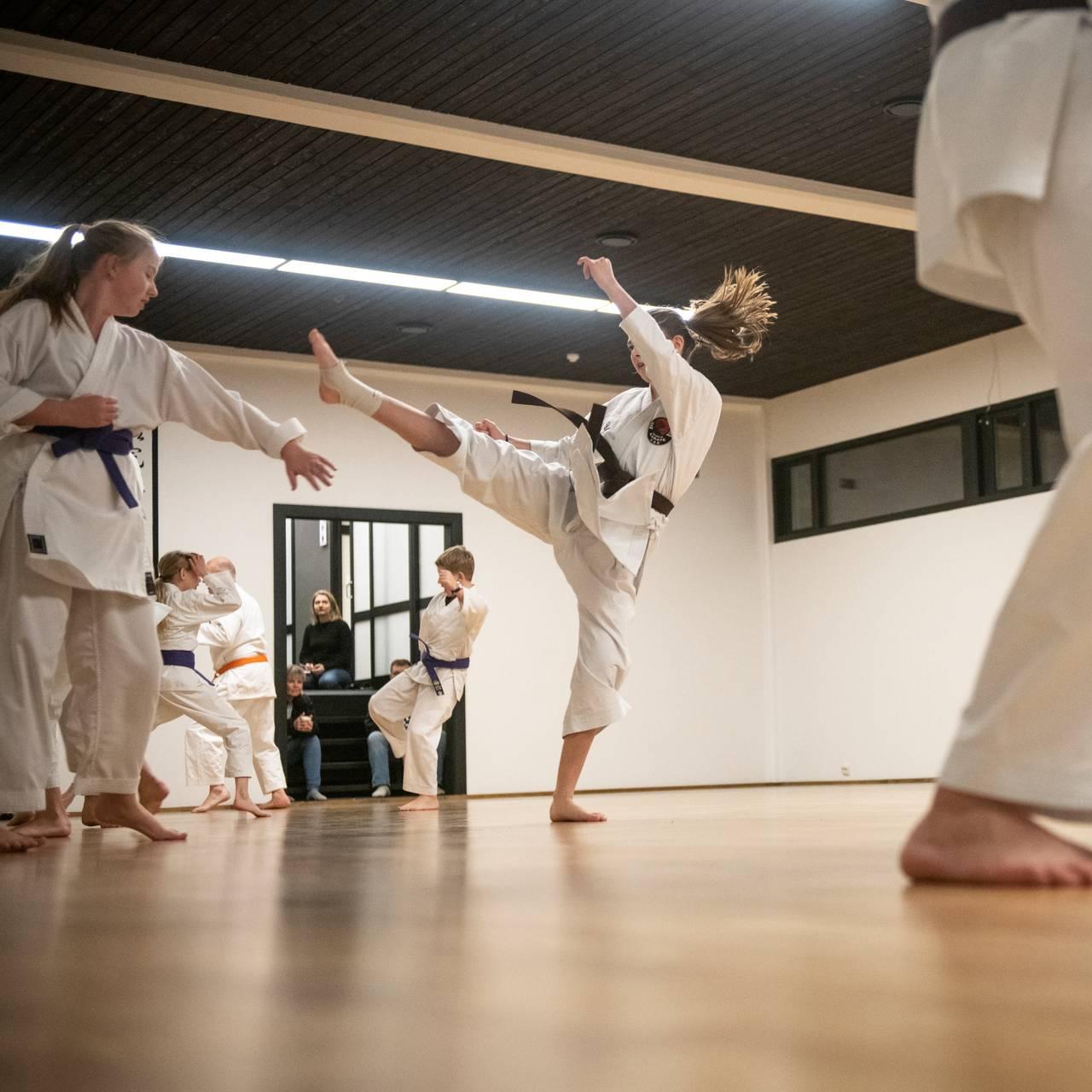 Telemark Karate - Seljord