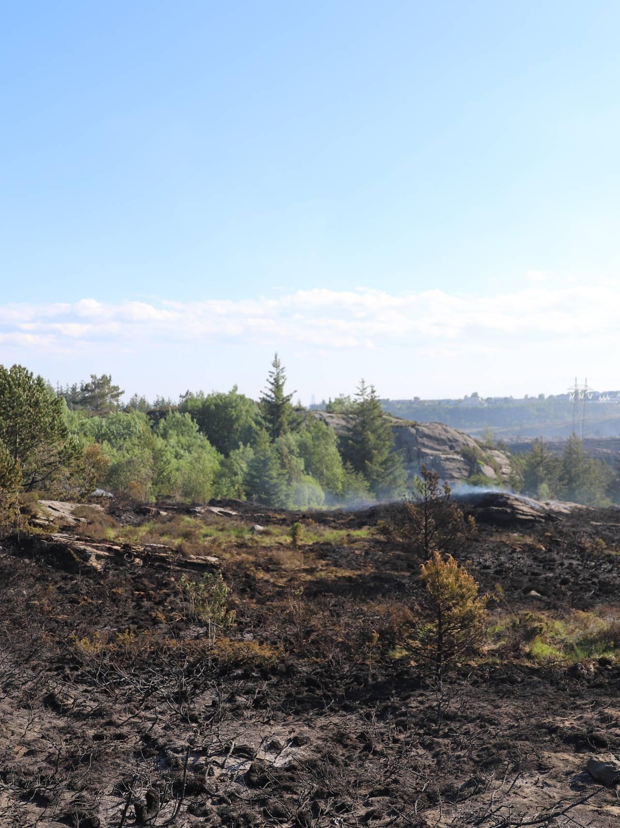 Brann på Sotra, Øygarden
