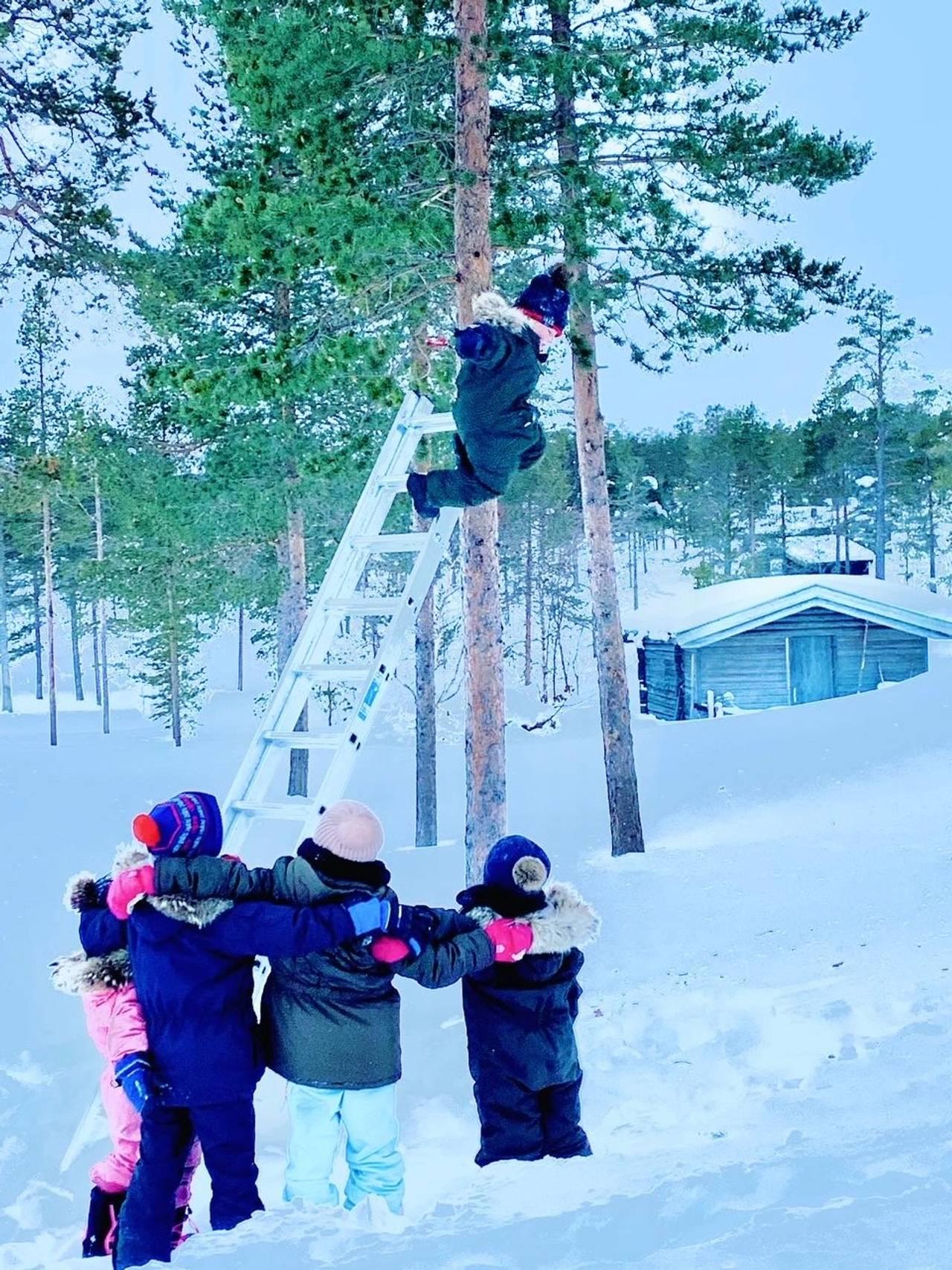 Barna leker i snøen med å hoppe fra trær.