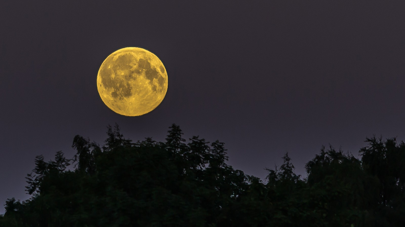 Fullmåne i juli, sett fra Lade