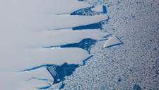 Havis i Antarktis - Foto: Tore Meek/NTB scanpix