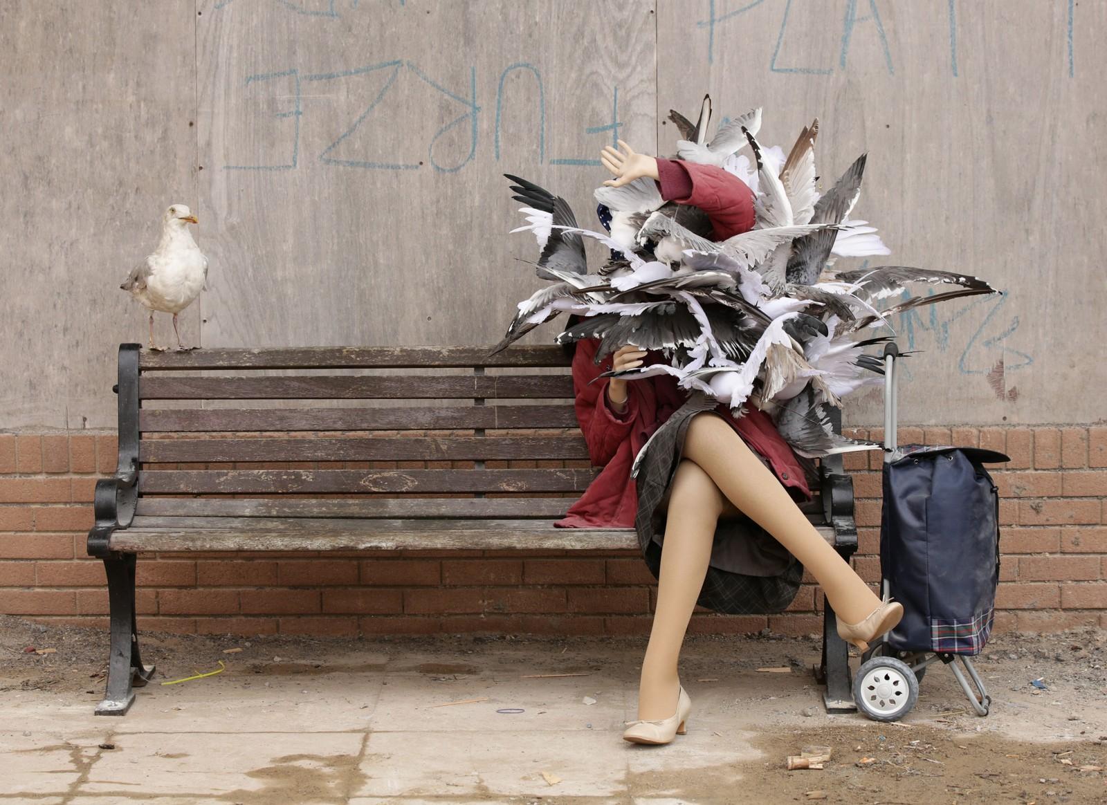 I et intervju med magasinet Juxtapoz sier Banksy at valget av lokasjon for utstillingen er det han kaller det perfekte publikum; lavinntekts engelskmenn i en søvnig kystby.