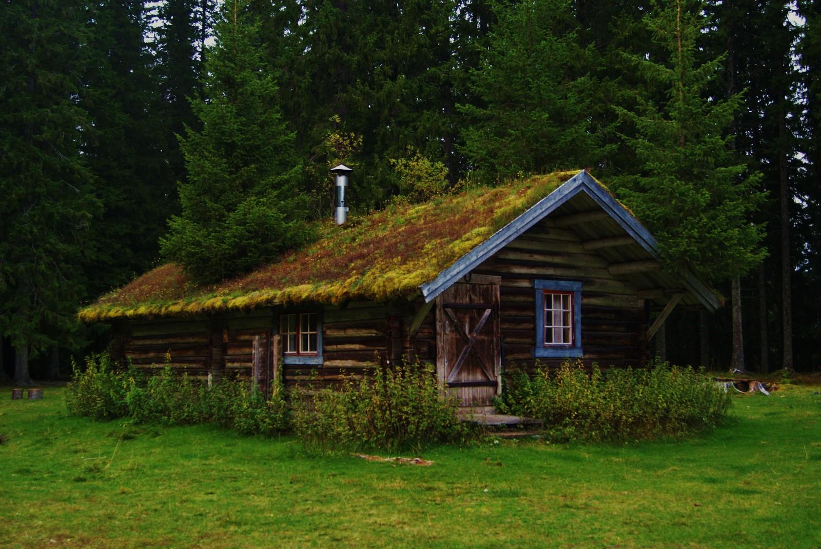 Den gamle skogstua på Ramsåsvollen i Verdal