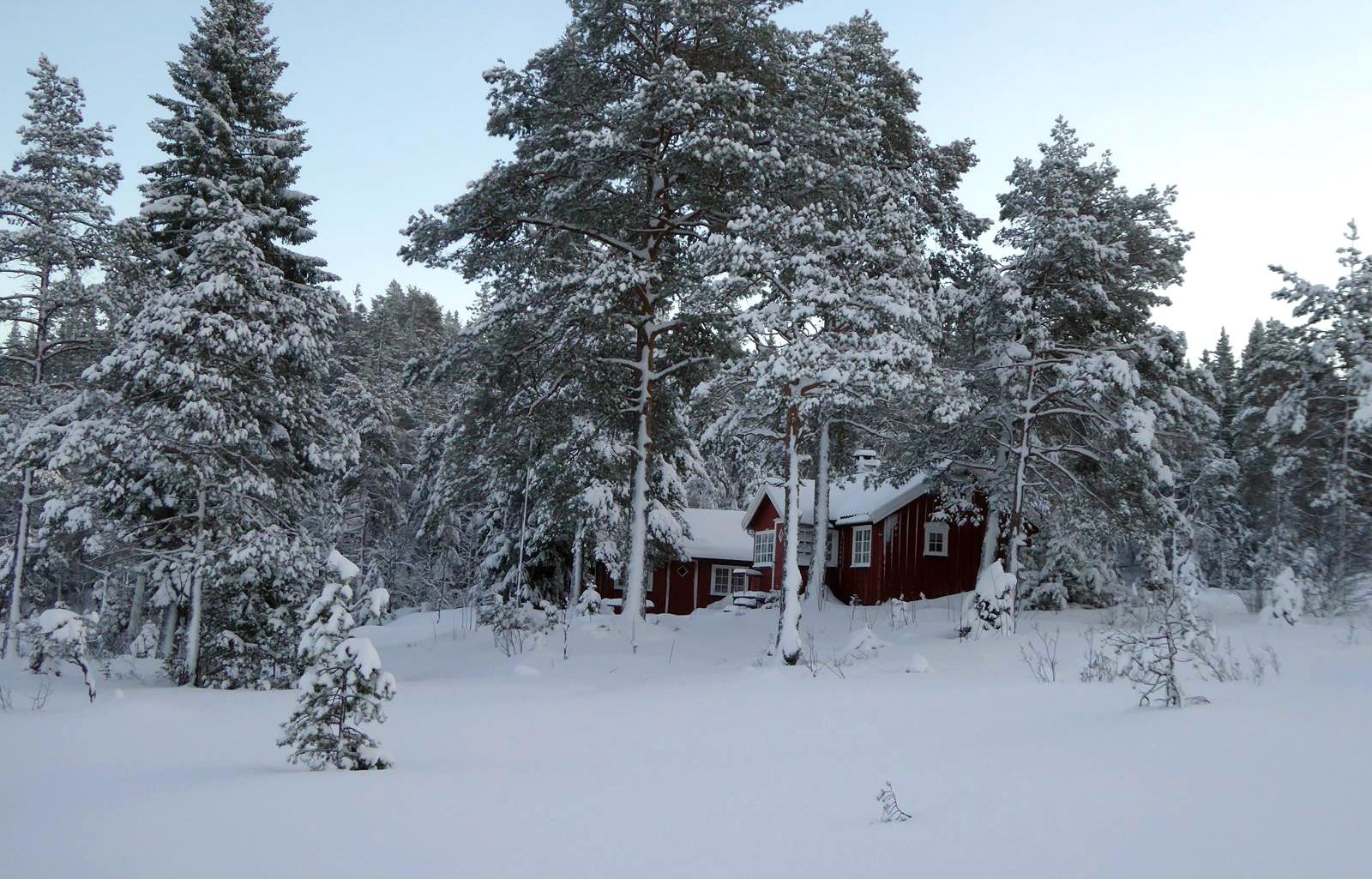 Vinteridyll i Reemarka, Stjørdal