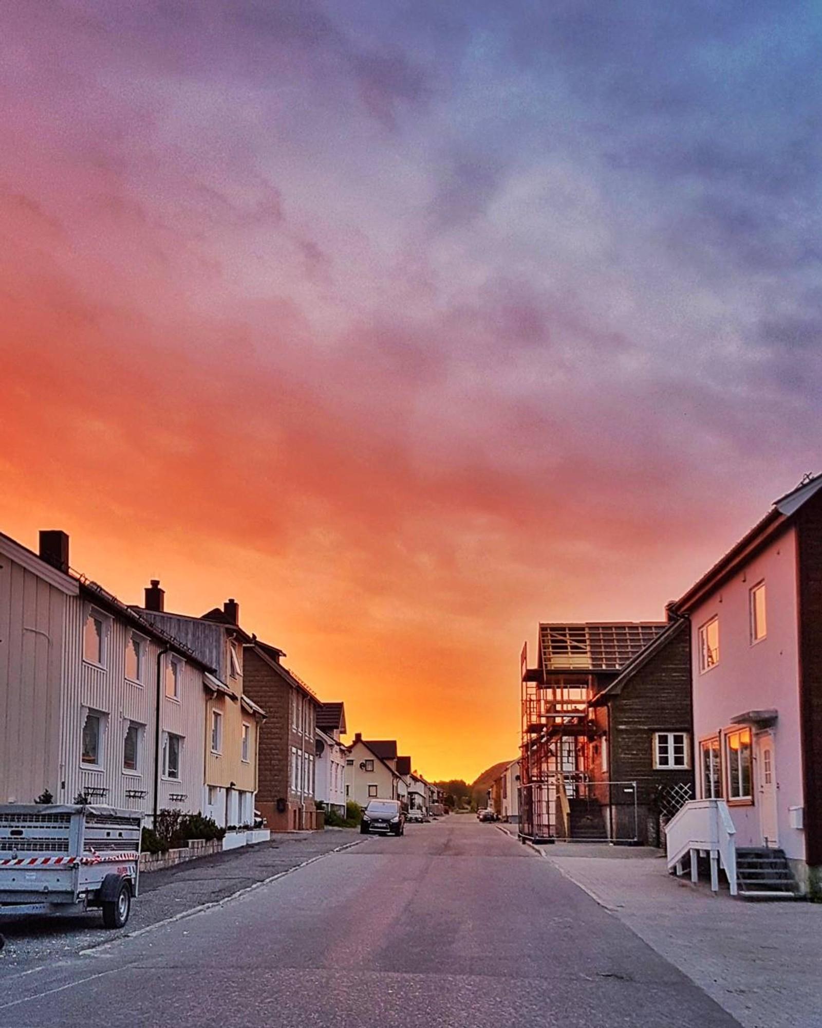 Sommerbilder fra #nrktrøndelag.