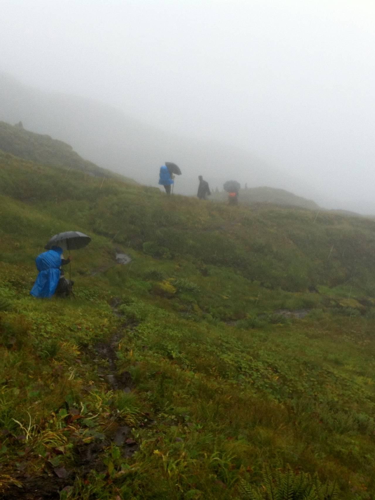 Fjellside i Himalaya, folk klatrer med paraplyer på pilegrimsferd