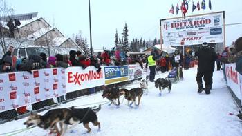Joar Ulsom ved startpunktet i Iditarod 2015