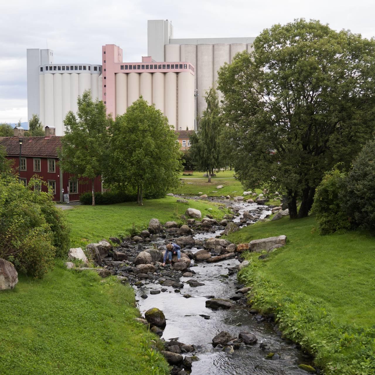 Ilabekken Trondheim