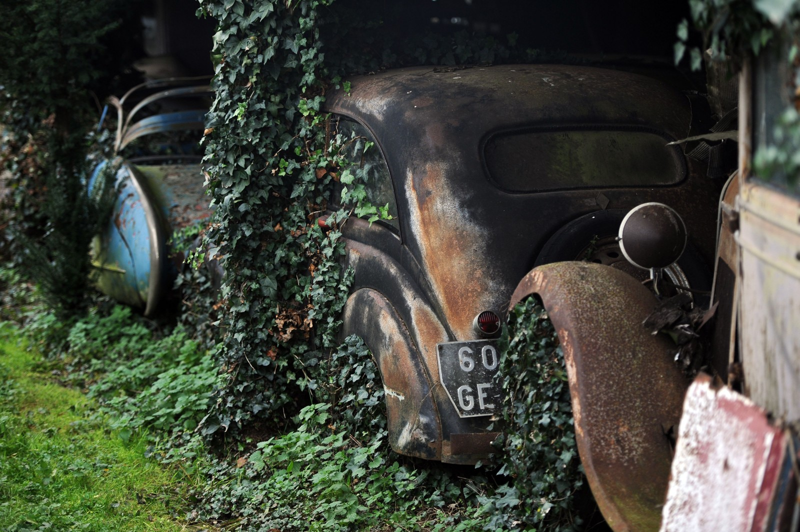 Naturen har satt sine spor på de mange og gamle bilene.